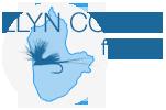 Llyn Coron